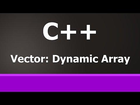 C++ Dynamic Arrays : STL Vectors Beginner Tutorial
